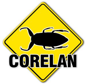 Corelan Training